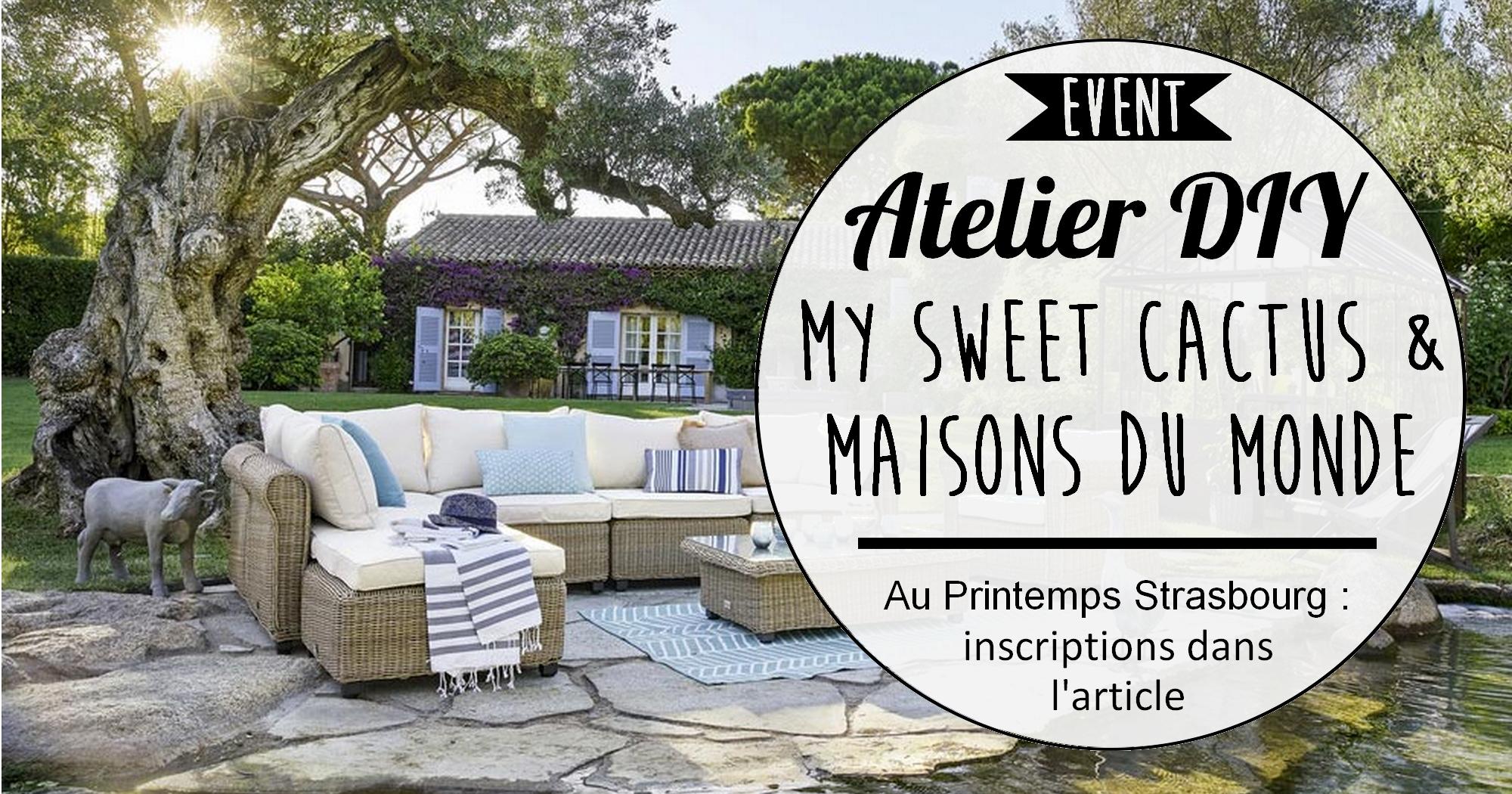 Atelier DIY My sweet cactus X Maisons du Monde