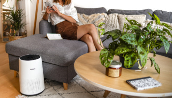 Qualité de l'air : 7 conseils pour dépolluer son intérieur